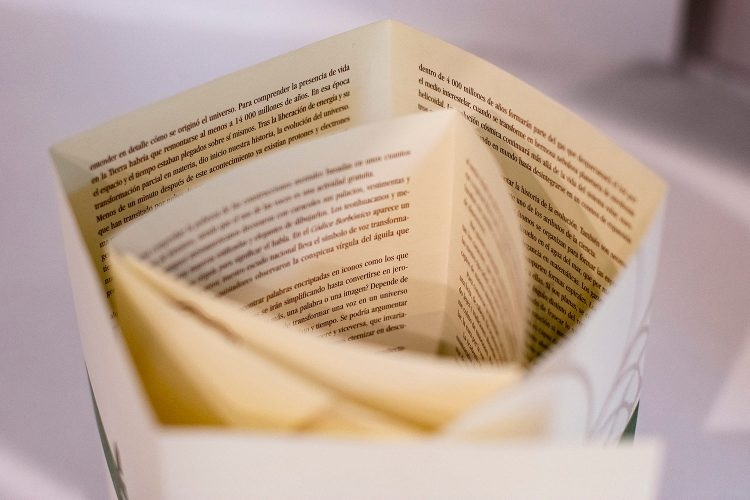 Hojas de libro en exposición Libros, Coleccione y Laberintos