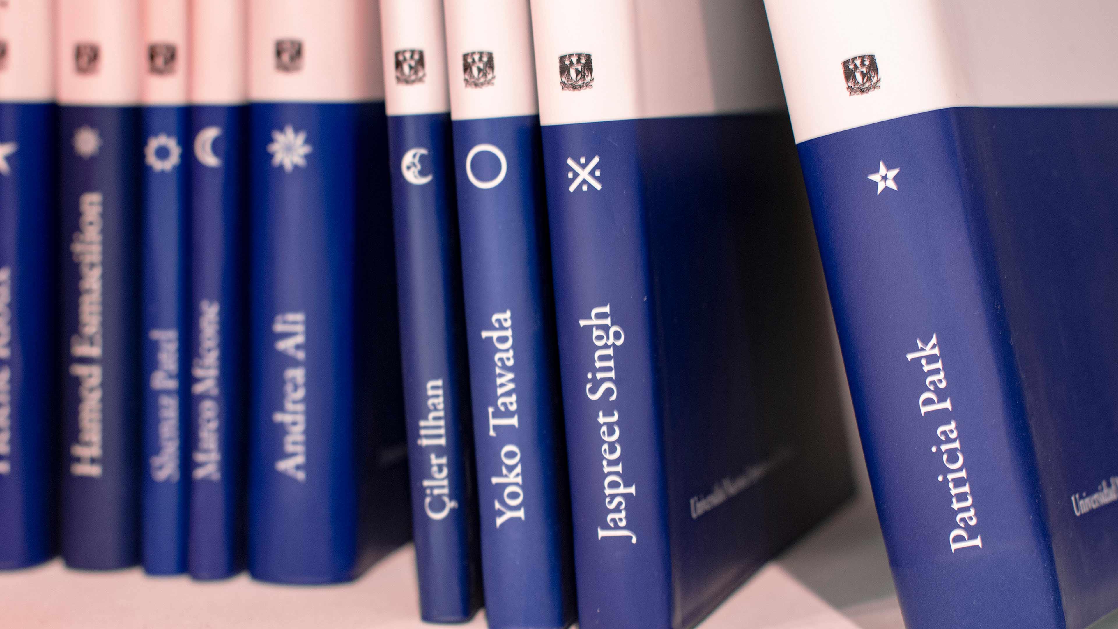 Portada de reseña exposición Libros, Colecciones y Laberintos