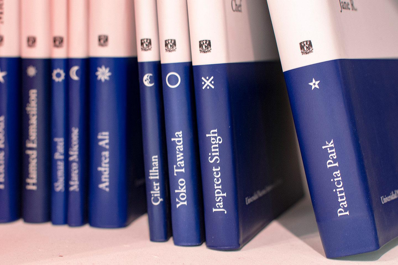 Preview Reseña Libro Colecciones y Laberintos