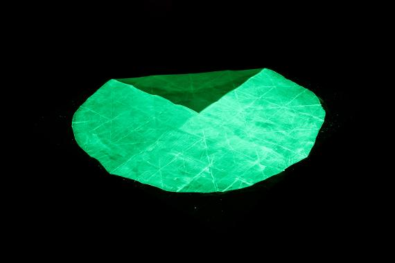 Papel Verde Exhibicion Violeta Horcasitas